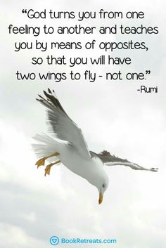 God turns you from one feeling to another and teaches you by means of opposites, so that you will have two wings to fly - not one.  - Rumi