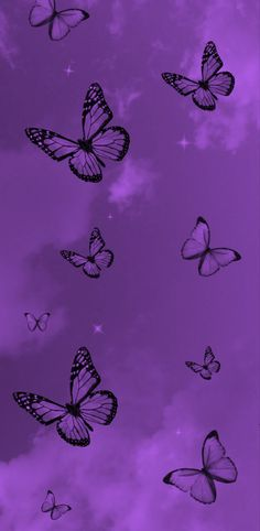 Another purple butterfly edit