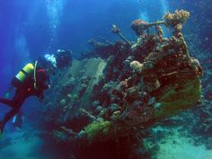 SCUBA DIVING ~ Indulge in fascinating Greece - Travel Tips for Vacations & Honeymoons in Greece