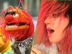 Krass! Diese Stars sehen aus wie Figuren aus der Muppet-Show   Celepedia The Muppet Show, Star Wars, Puppet, Stars, Fictional Characters, Figurines, Sterne, Fantasy Characters, Starwars
