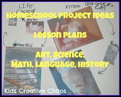 Elementary Homeschool Projects Ideas and Lesson Plans for all subjects.