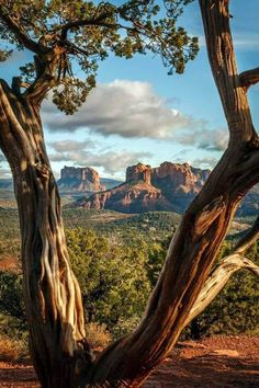 Places to visit in casinos near sedona arizona one and only trave… – North America travel - Travel Destinations Sedona Arizona, Arizona Travel, Arizona City, Arizona Usa, Grand Teton National Park, Us National Parks, Beautiful Places To Visit, Cool Places To Visit, Grand Canyon