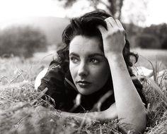 Elizabeth Taylor, 1956