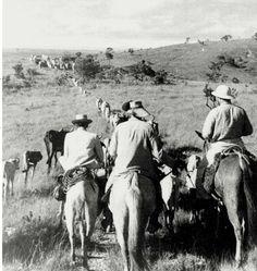 João Guimarães Rosa, na viagem ao Sertão Mineiro, em 1952. [Foto: Eugênio Silva/ revista 'O Cruzeiro']