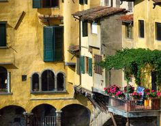 Windows in Florence (by Daniela Caneschi)