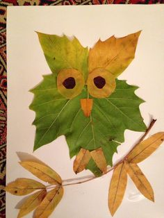 Owl leaf collage