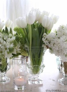 Glass vases of differing white flowers