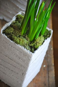 Eco friendly Easter/spring idea