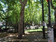 PRAÇA MATRIZ OU DA CONSTITUIÇÃO, Montevidéu, Uruguai. Esta praça fica no centro histórico, em frente a Catedral. Ali foi jurada a 1ª Constituição do país,daí a denominação. Tem um chafariz no centro.  Foto : Cida Werneck