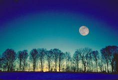 Winter moon rise #beautiful