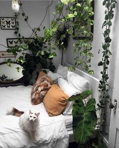 10 Rustic Home Decor Ideas to Present a Rural Ambience in the City - Bong Pret,Find your pure life coziness through the rustic home decor ideas. It is ready to bring back the naturalness of life along with the rural and farmhouse.