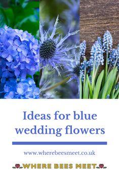 Inspiration for choosing blue flowers for your wedding Blue Wedding Flowers, Blue Flowers, Wedding Bouquets, Calming Colors, Color Schemes, Bride, Plants, Inspiration, Blue Flowers For Wedding