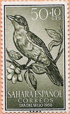 Birds Perched, Birds Flying, Birds aground – Stamp Community Forum – Page 28 – Bird Supplies Stamp Printing, Bird Perch, Stamp Collecting, Postage Stamps, Flying Birds, Prints, Animals, Image, Western Sahara