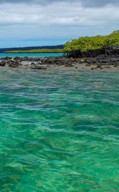 Crystal clear water in the Galapagos Islands