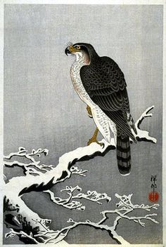 Hawk in Snow by Ohara Koson