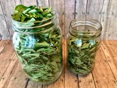 How to Dry Curry Leaves Naturally without Sunlight,Oven or Microwave – Food, Fitness, Beauty and More Microwave Food, Microwave Recipes, Vegetarian Protein, Vegetarian Recipes, Easy Indian Recipes, American Kitchen, Curry Leaves, Drying Herbs, Winter Food