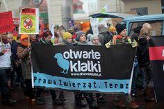 Dzień bez futra w Warszawie / Anti-fur demo in Warsaw