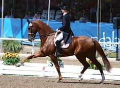 Heather Blitz and Paragon at the Pan Am Games. I love this horse! 18.1 chestnut!