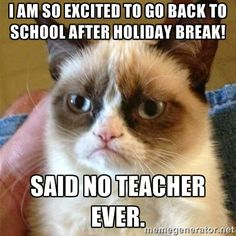 I'm so excited to go back to school after holiday break!  SAID NO TEACHER EVER @ http://teachingisagift.blogspot.ca