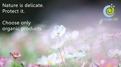 Nature is delicate