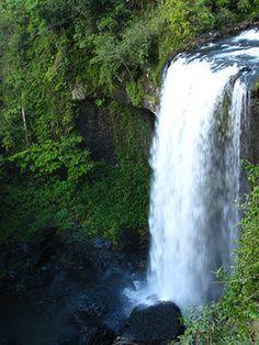 Zillie Falls (Cairns Highlands ), on the Waterfalls Circuit near Millaa Millaa.