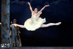 Wardrobe: Types of Tutus | Lindsi Dec in Ronald Hynd's The Sleeping Beauty.