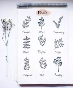 40 Easy Things to Draw for Your Bullet Journal Plant Doodles - How to Draw Leaves<br> Here is a list of 40 simple things to draw for your bullet journal. The perfect way to liven up your bullet journal is with art and little doodles. Floral Drawing, Leaf Drawing, Plant Drawing, Drawing Drawing, Drawing Ideas, Drawing Journal, Bullet Journal Spread, Bullet Journal Inspiration, Bullet Journal Homework