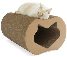 Cat furniture and accessories solutions for cats and their beloved owners.