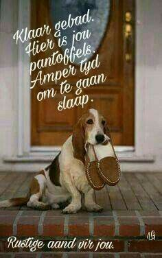 Good Night Sleep Tight, Good Morning Good Night, Good Night Quotes, Good Morning Wishes, Day Wishes, Greetings For The Day, Evening Greetings, Afrikaanse Quotes, Goeie Nag