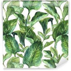 Shop for KESS InHouse Kess Original Banana Leaves Green White Shower Curtain - Multi. Get free delivery On EVERYTHING* Overstock - Your Online Shower Curtains & Accessories Store! Tropical Bathroom, Beach Bathrooms, Small Bathroom, Cool Shower Curtains, Shower Curtain Hooks, Banana Leaf Shower Curtain, Original Banana, Shower Sizes, Bathroom Gallery
