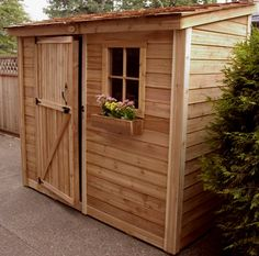 Lovely little lean-to. Coop?
