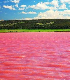 Pink Lake Hillier - Western Australia - Fascinating! Read all about it: http://viola.bz/pink-lake-hillier/