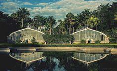 Jardim Botânico - São Paulo: http://jardimbotanico.sp.gov.br/