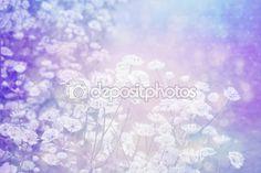 Um sonho lindo fundo com Prado de flores — Imagem Stock #90725926