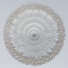 Intricate Organic Form Cut from Paper by Rogan Brown