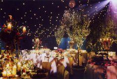 Golden fairy lights over plum + blue ground.