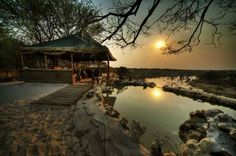 Safari plunge pool with a view over the Boteti River at Meno A Kwena Botswana Safari Holidays, Wildlife Safari, Plunge Pool, Tour Operator, Future Travel, Tent Camping, Places To See, Sustainability, Tourism
