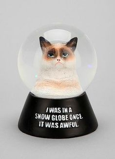 The Grumpy Cat Snow Globe is For People Who Hate the Holidays #grumpycat trendhunter.com