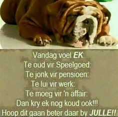 Ek is pootuit van die week. Afrikaanse Quotes, Goeie More, Good Morning Wishes, Strong Quotes, Funny Cute, Hilarious, Quotes To Live By, Best Quotes, Qoutes
