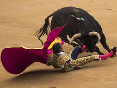 Article: Is it finally time for Spain to ban bullfighting? Three bullfighters were gored in just one corrida, or session, on Tuesday