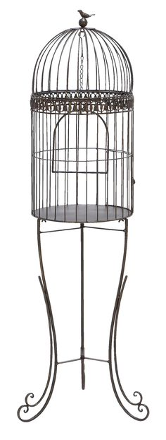 Features:  Product Type: -Decorative bird cage.  Style: -Traditional.  Subject: -Home decor and furniture.  Finish: -Black.  Primary Material: -Metal.  Age Group: -Adult. Dimensions:  -Width between e