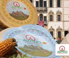 Formaggio Asiago DOP / Asiago PDO Cheese @ Caseus Veneti 2016