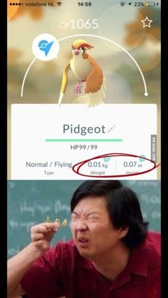pidgeot прикол (pokemon go)