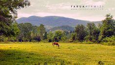 500px'te Faruk Kırmızı tarafından Horse and Landscape fotoğrafı #landscape