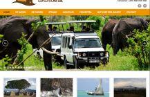African Wildcats: op safari in Afrika. Website ontwikkeling op basis van Wordpress