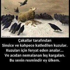 TC Çapul'SU (@suparlak4) | Twitter