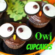 "Owl Cupcakes for Isaiah's Valentine's Day party... may with tags that say, ""You're a hoot!"" or ""Hoo loves ya like I do?"""