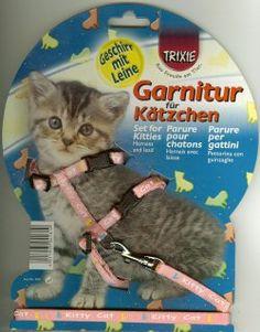 Trixie 4181 Kätzchen-Garnitur, Kätzchen/kleine Katzen Nylon, 21-33 cm/8 mm