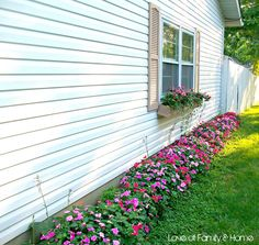 Curb Appeal...Evolution of The Side Yard