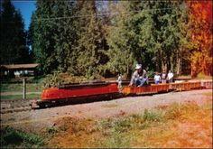Feyer Park miniture steam trains, Molalla Oregon